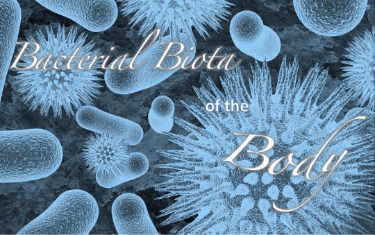 Bacterial Biota of the Body