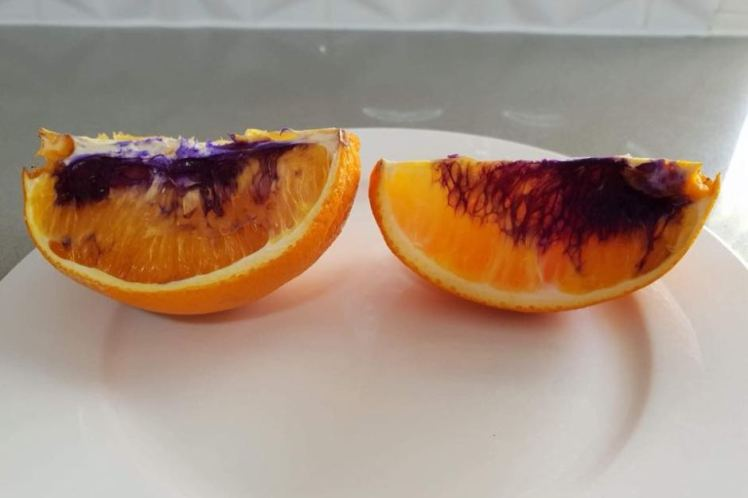 1536280773-orange-slices-purple